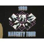画像4: 【過去に販売した商品です】古着 DANGER DANGER デンジャーデンジャー NAUGHTY ツアー Tシャツ 90's/130614 (4)