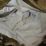画像3: 古着 Toropicana アロハ ハワイアン サーフ スイムショーツ ビーチショーツ ショートパンツ GRN 総柄 60's ヴィンテージ / 170721 (3)