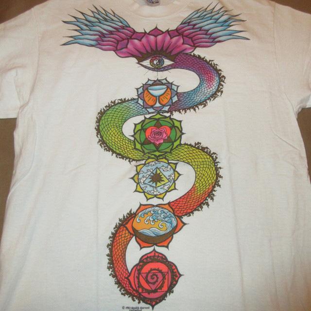 画像2: 【過去に販売した商品です】古着 GRATEFUL DEAD グレイトフルデッド DRAGON Tシャツ 80's/160507